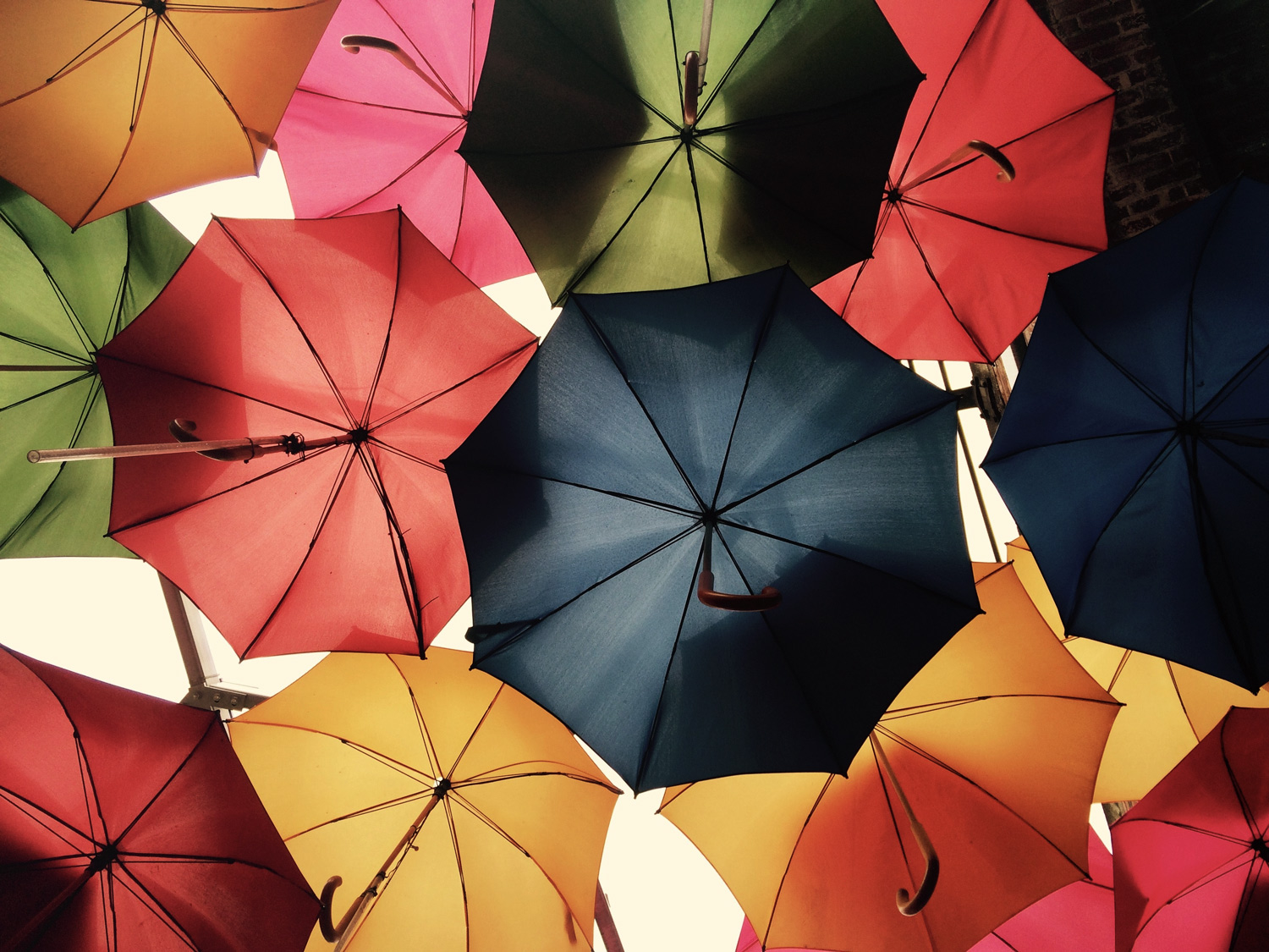 Colourful umbrellas to represent bank insurance feature